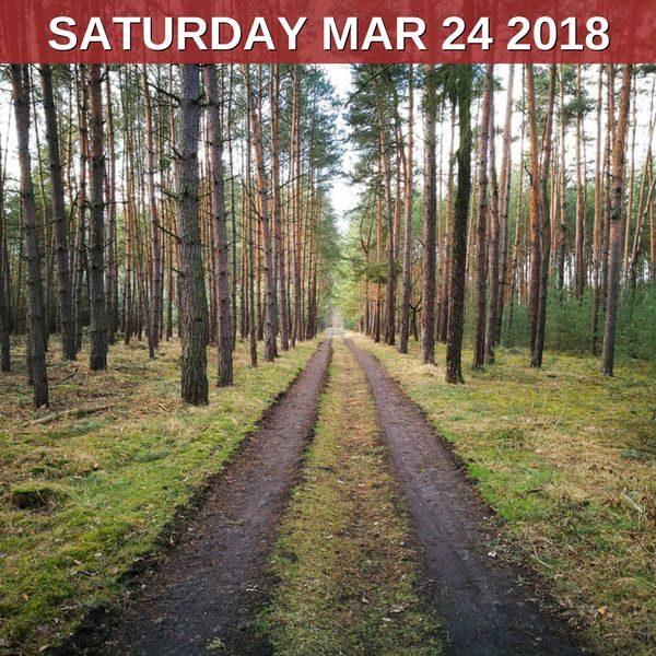 Let's hike in the footsteps of Bohumil Hrabal!