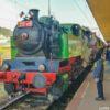 Steam train ride!
